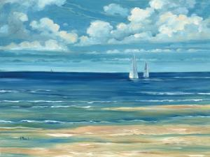 Summerset Sailboat by Paul Brent