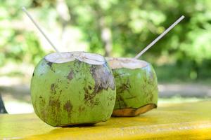 Fresh Coconut by Paul_Brighton
