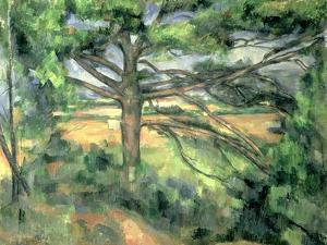 The Large Pine, 1895-97 by Paul Cézanne