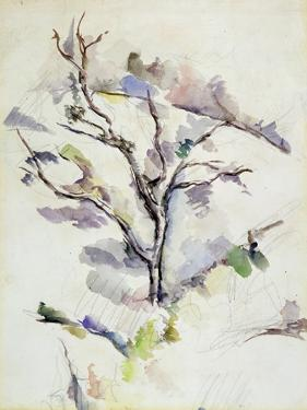 The Oak by Paul Cézanne