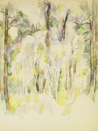 Woodland Scene, C.1900-1904 by Paul Cézanne