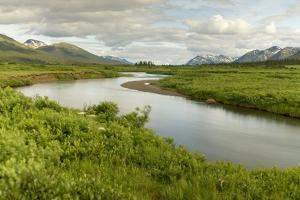 The Headwaters of the Skeena River in the Area of the Sacred Headwaters by Paul Colangelo