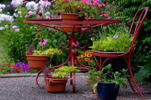 A Red Wrought Iron Plant Stand Displaying Flowers and Plants by Paul Damien