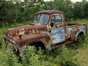 Abandoned Truck Rests in a Patch of Overgrown Grasses and Bushes by Paul Damien