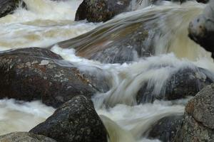 Fall River Rapids in Rocky Mountain National Park, Colorado by Paul Damien
