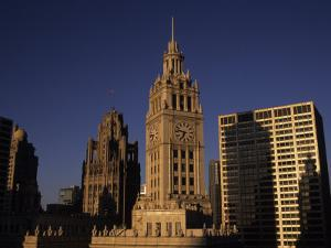 Sunlight on the Wrigley Building Tower and Tribune Building by Paul Damien