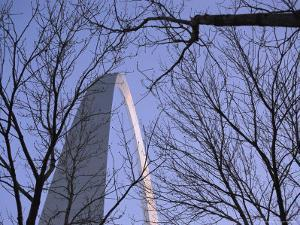 View of the Gateway Arch Through Leafless Tree Branches by Paul Damien