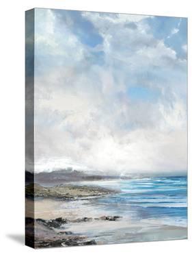 Calm Coast by Paul Duncan