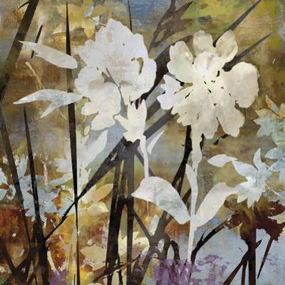 Floral Eclipse II by Paul Duncan