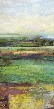Green Fields I by Paul Duncan