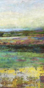 Green Fields II by Paul Duncan