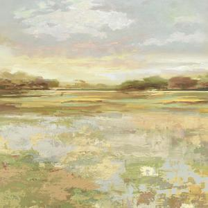 Harlech - Detail by Paul Duncan