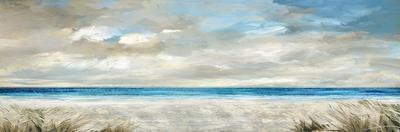 Ocean Serenity by Paul Duncan