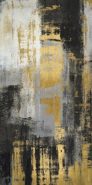 Sumptuous Shards by Paul Duncan