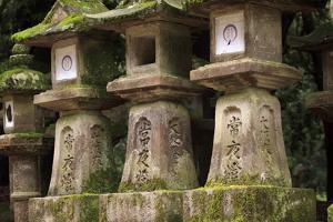 Kasuga-Taisha Shrine by Paul Dymond