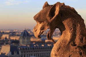 Looking Out over City, Paris, France from Roof, Notre Dame Cathedral with a Gargoyle in Foreground by Paul Dymond