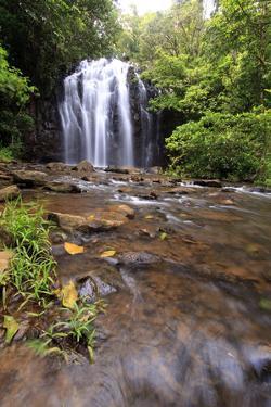 Queensland, Australia by Paul Dymond