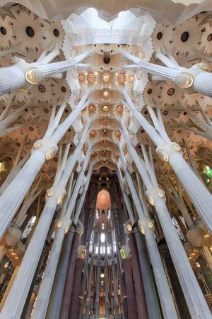 The Stunning Interior of the Sagrada Familia, Spain