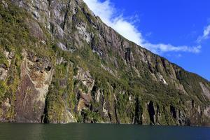 Towering Peaks and Narrow Gorge of Milford Sound on the South Island of New Zealand by Paul Dymond