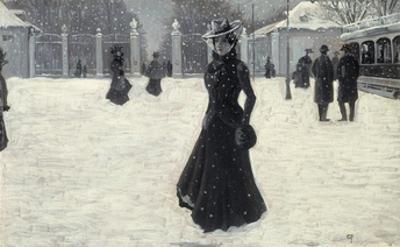 Frederiksborg Park, Copenhagen in Winter