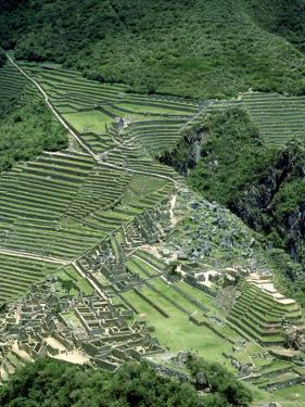 Machu Picchu Inca Ruins & Terracing Viewed from Huayna Picchu, Peru by Paul Franklin