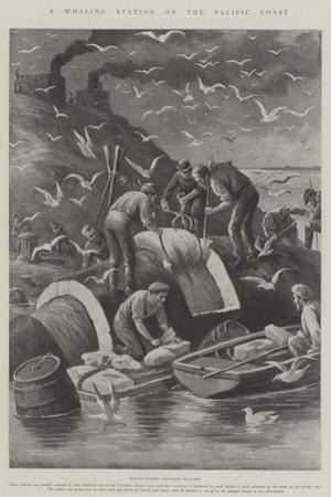 A Whaling Station on the Pacific Coast