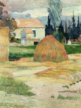 Landscape Near Arles, 1888 by Paul Gauguin