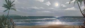 Moonlit Paradise II by Paul Geatches