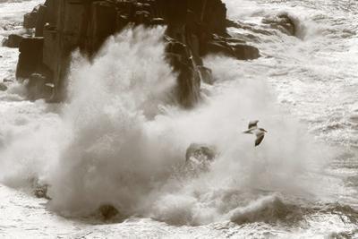 Large Wave Breaks on Cornish Coast by Paul Gillard