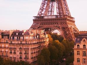 Eiffel Tower by Paul Hardy