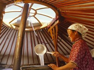 Gobi Desert, Cooking Horses Milk to Produce the Spirit, Arak, in the Gobi Desert, Mongoli by Paul Harris