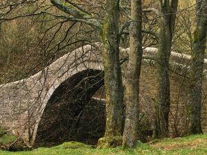 Ivelet Bridge, a Traditional Packhorse Bridge, Swaledale, Yorkshire Dales National Park, England by Paul Harris