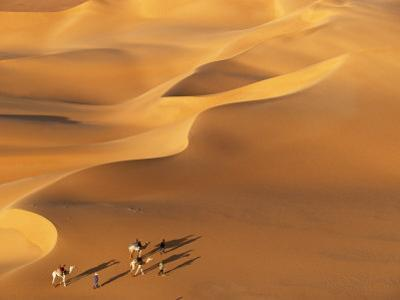 Tenere Desert, Camel Caravan Travelling Through the Air Mountains and Tenere Desert, Niger by Paul Harris