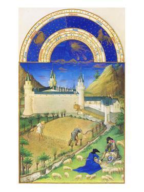 Le Tres Riches Heures Du Duc De Berry - July by Paul Herman & Jean Limbourg
