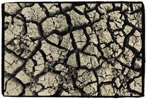 Dry, Cracked, Parched Earth in South Luangwa Valley National Park, Zambia by Paul Joynson Hicks
