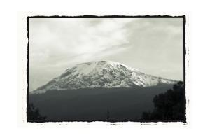 Mount Kilimanjaro with Trees in Front, from Tanzania by Paul Joynson Hicks