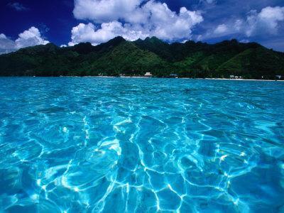 Lagoon in Haapiti, Moorea, the French Polynesia