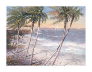 White Sand Beaches by Paul Mathenia