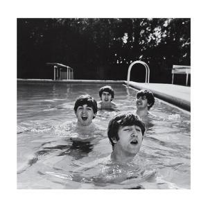 Paul McCartney, George Harrison, John Lennon and Ringo Starr Taking a Dip in a Swimming Pool