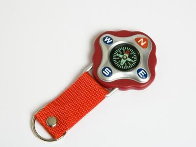Key Ring Compass by Paul Seheult