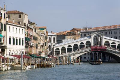 Rialto Bridge and Grand Canal by Paul Seheult