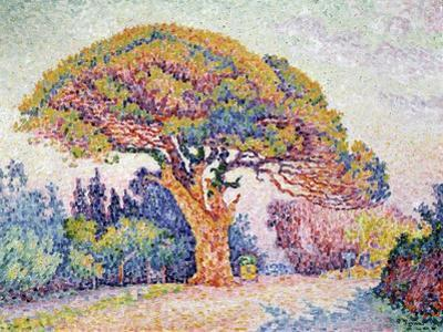 'Le Pin de Bertaud at Saint-Tropez', 1909 by Paul Signac