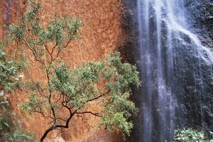 Ayers Rock Waterfall by Paul Souders