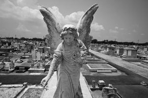 Greenwood Cemetery, New Orleans, Louisiana by Paul Souders