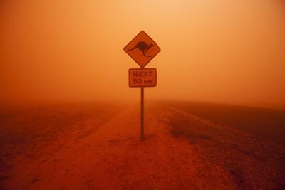 Kangaroo Crossing Sign in Dust Storm in the Australian Outback by Paul Souders