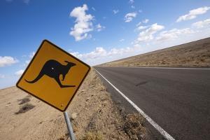 Kangaroo Crossing Sign in the Australian Outback by Paul Souders