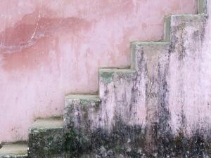 Mildew on Pink Stairs by Paul Souders