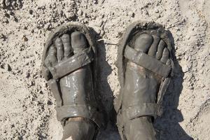 Mud-Covered Feet, Chobe National Park, Botswana by Paul Souders
