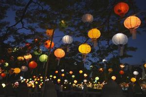 Paper Lanterns at Jangchung Park by Paul Souders