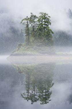 Rainforest Islands in Fog in Alaska by Paul Souders